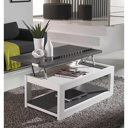 table basse le meuble indispensable du salon. Black Bedroom Furniture Sets. Home Design Ideas