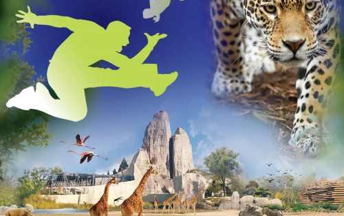 parc-zoo
